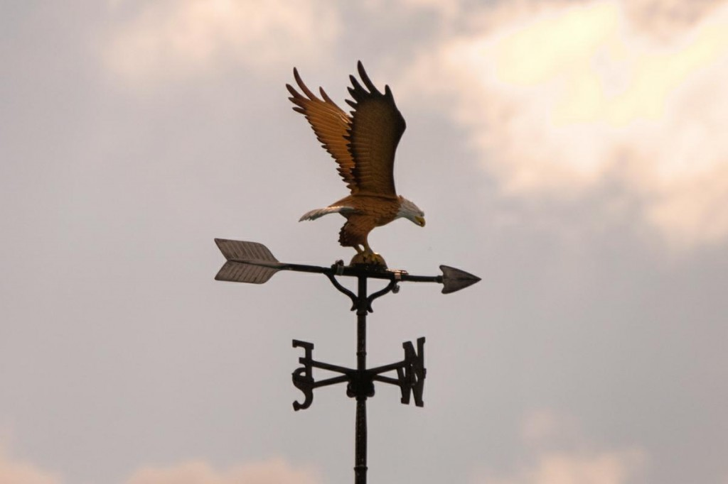 Bald Eagle Weathervane