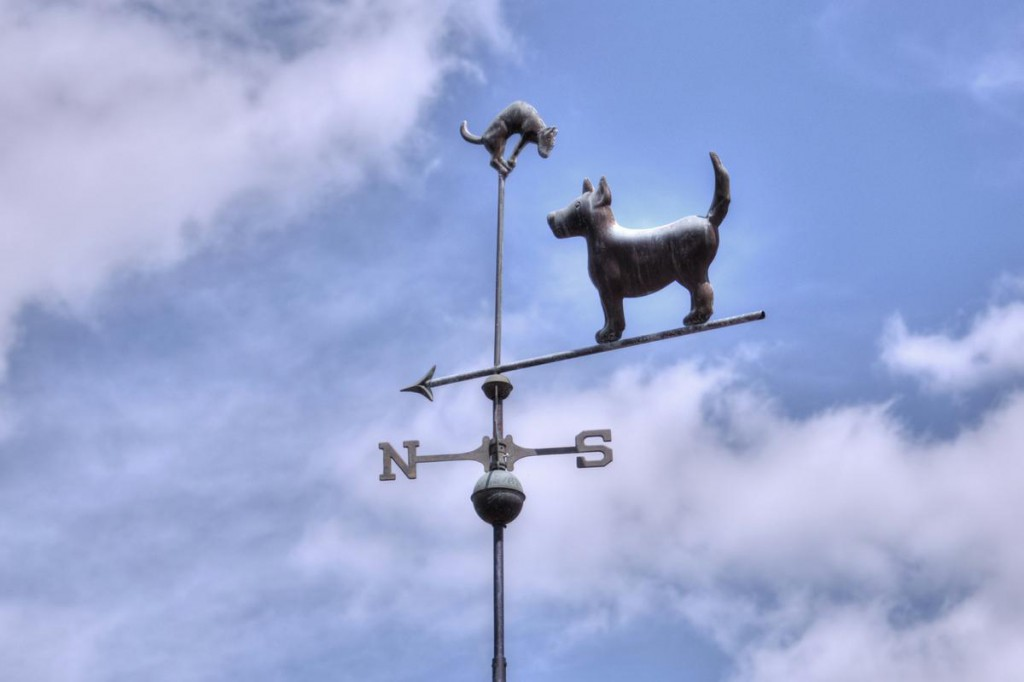 Dog and Cat Weathervane
